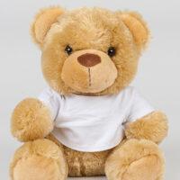 Bear In A T Shirt
